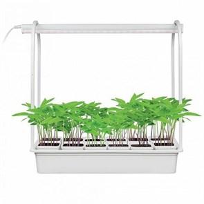 Светодиодный светильник для растений Uniel Minigarden ULT-P34-10W/Sple IP40 White 12 UL-00004998