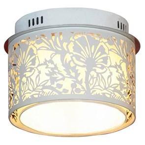 Потолочный светильник Lussole Vetere LSF-2307-04