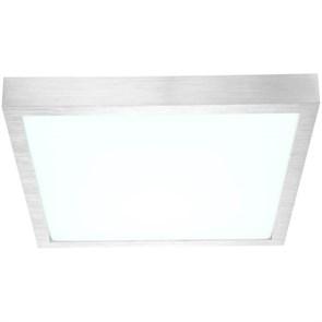 Потолочный светодиодный светильник Globo Tamina 41662